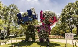 奥运吉祥物植物成景观
