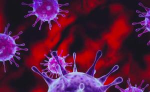 央视:南非出现新冠病毒C.1.2变异毒株