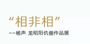"""""""相非相——杨声、龙昭阳伉俪作品展""""在北京开幕,展期至6月13日"""