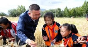 西藏:青稞地里的思政课(图)