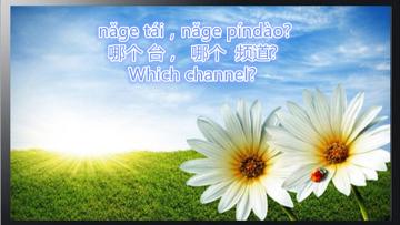 Lesson 213 Television 第二百一十三课 电视 (2)
