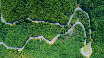 Roads to happiness in eastern Chinese city