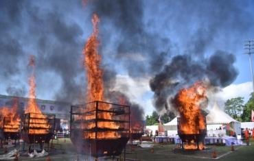 印度焚毁收缴的犀牛角