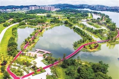 广州以生态环境高水平保护推动经济高质量发展 已完成54条道路绿化提升