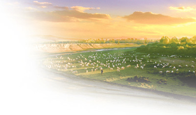 推进生态文化旅游深度融合,实现绿色发展 右玉 跑好接力赛(美丽中国)