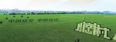 小岗村大包干拉开了我国农村改革序幕 中国农民的伟大创造(辉煌历程)