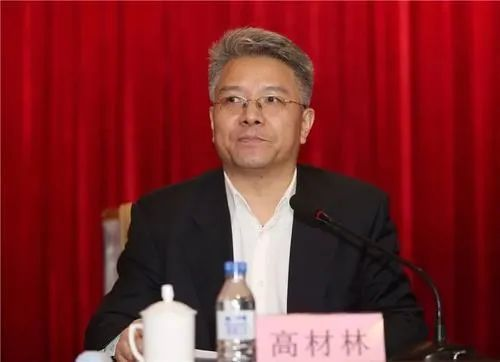 中共中央批准 高材林、王创民被开除党籍