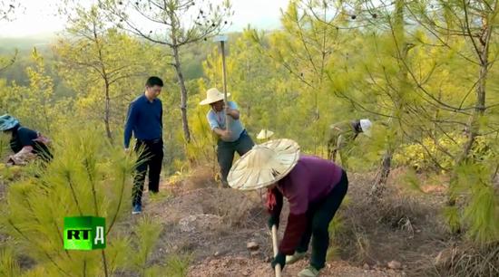 ▲在山区指导当地人栽树的专家。(纪录片截图)