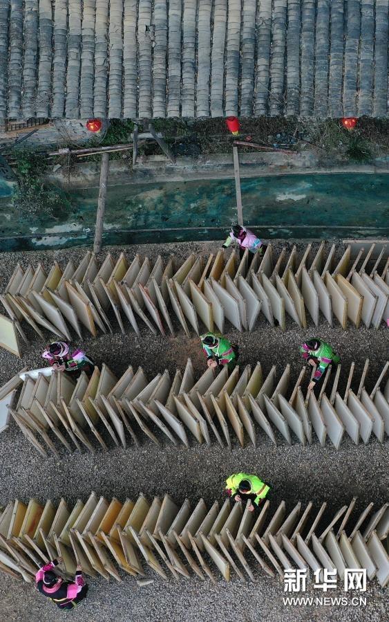 1月14日,村民在贵州省丹寨县南皋乡石桥村古法造纸作坊晾晒白皮纸。新华社发(黄晓海 摄)