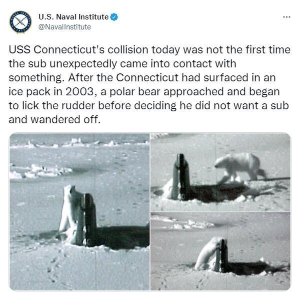 在南海出事的美国核潜艇被曝黑料:曾在破冰上浮后被北极熊一顿舔