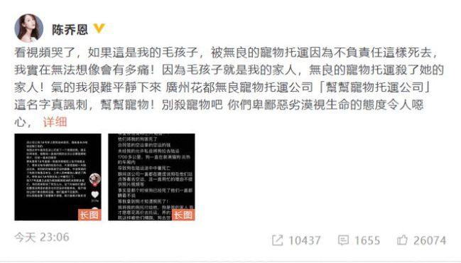 陈乔恩为金毛siri发声 因网友宠物狗不良托运致死
