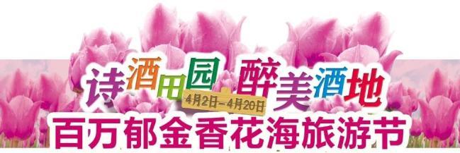 """相约潍坊齐鲁酒地,""""百万郁金香花海旅游节""""盛大开启"""