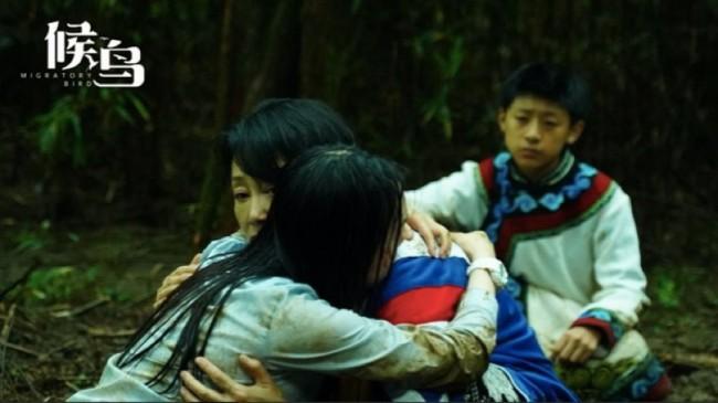 五一档最深情电影《候鸟》让你知道如何珍惜当下