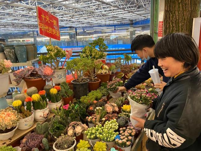就地过年 昆明斗南花卉市场进入销售高峰期