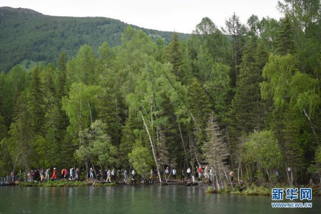 新疆阿勒泰地区喀纳斯景区旅游升温 五月以来接待游客147万余人次