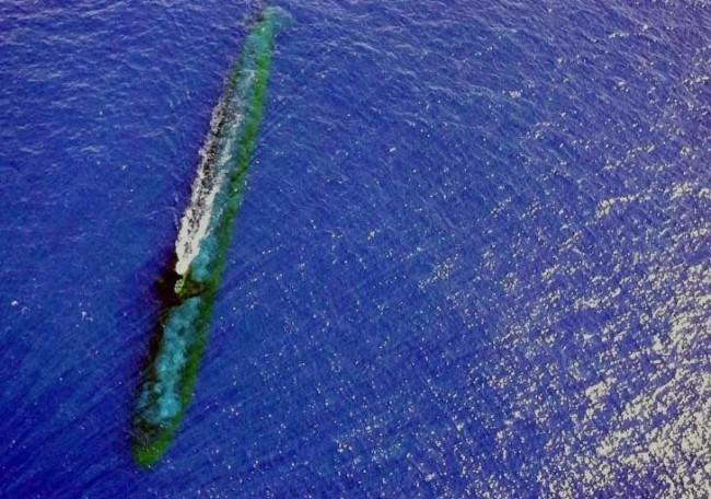 这张照片或许能说明,为什么美国核潜艇南海撞上人工渔场不可能