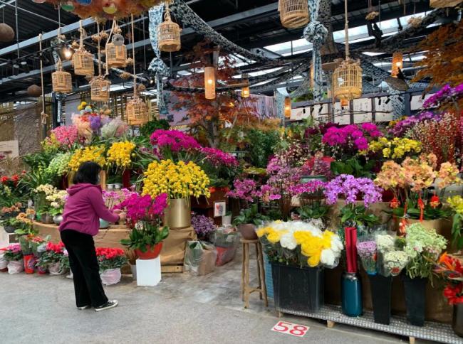 新春走基层 | 年宵花迎来热销,商户每天加班加点发货