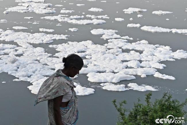 印度河流受污染 河面被白色泡沫覆盖