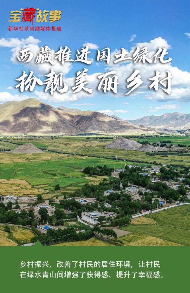 """宝""""藏""""故事 绿色奇迹!西藏推进国土绿化扮靓美丽乡村"""