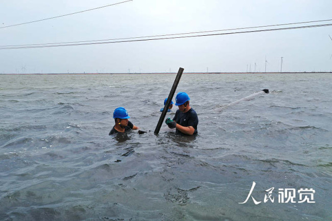 山东滨州遭遇龙卷风袭击 供电公司紧急抢修受损线路