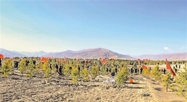图为山南市干部职工在雅江河谷开展植树造林活动。